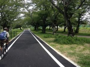 嵐山舗装路